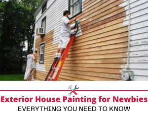 Exterior House Painting for Newbies